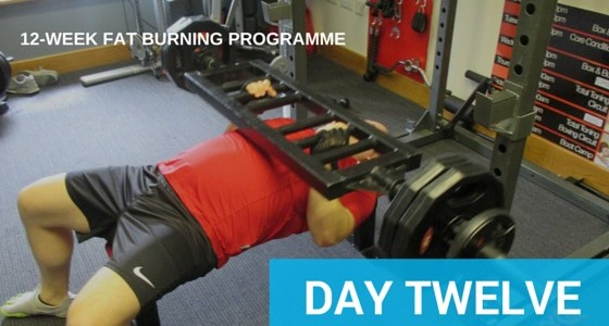 Day 12 – Training Shoulders and Triceps